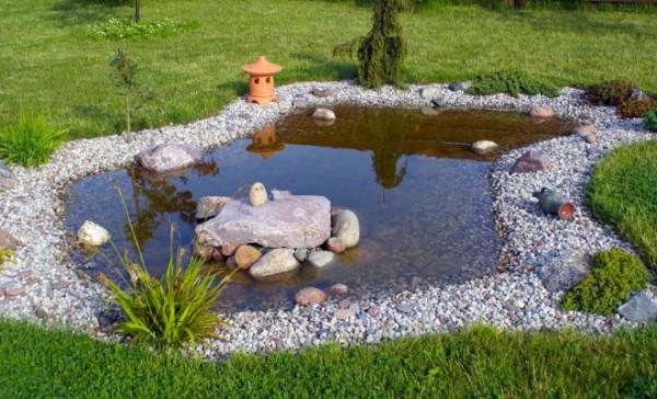 Как создать собственный пруд