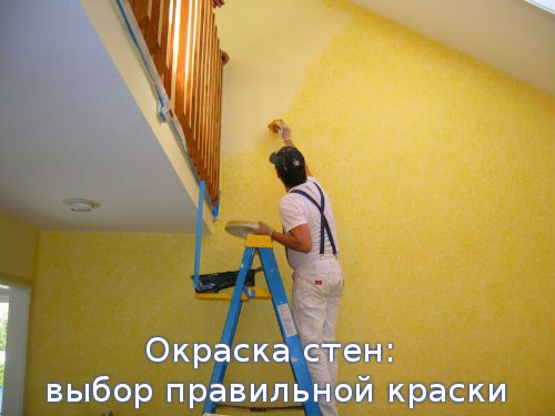 Окраска стен: выбор правильной краски