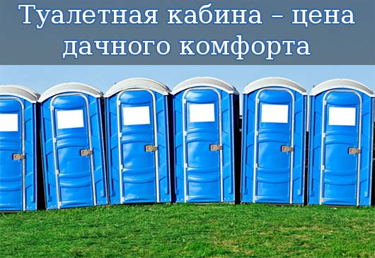 Туалетная кабина – цена дачного комфорта